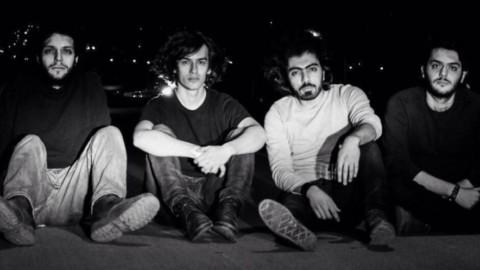 The lemonoise band  Biography